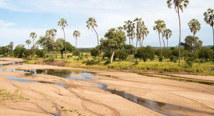 Destination Ruaha in Tanzania