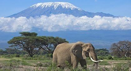 Tansania in Afrika