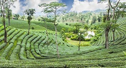 Sri Lanka in Asien