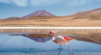 Destination Uyuni in Bolivia