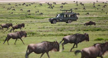 Reiseziel Arusha in Tansania