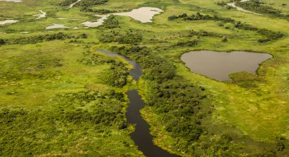 Destination Pantanal North in Brazil