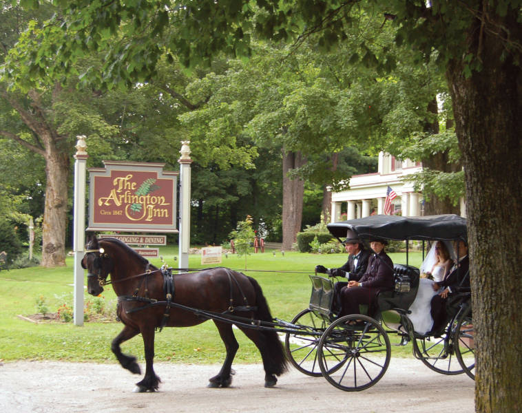 Horse and carriage at Arlington Inn