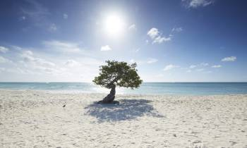 a man standing on top of a sandy beach