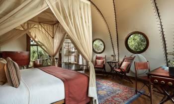 Cocoon Suite interior