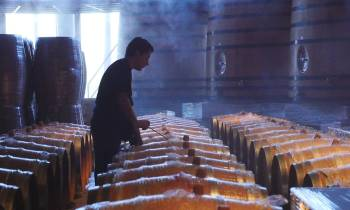 Chile Calchagua Winery