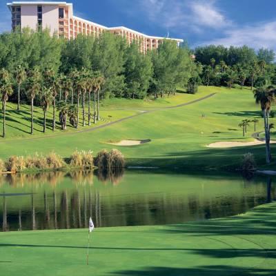 Turtle Hill Golf