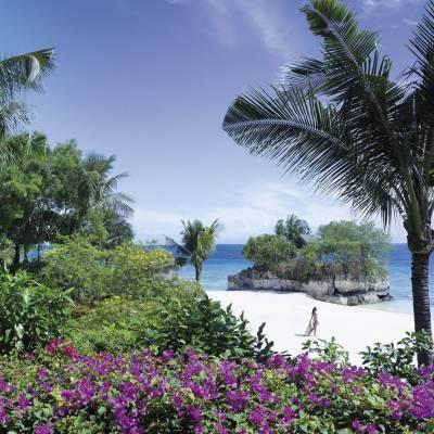 Beach and Garden