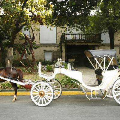 a person riding a horse drawn carriage