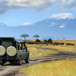 'Lion King' inspired African Safari in the Masai Mara