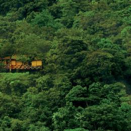 Asia Tours India Wayanad Vythiri Resort house