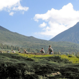 Trekking in Rwanda