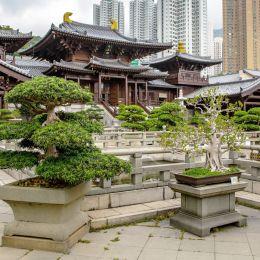 Nan Lian Garden, Kowloon, Hong Kong, Asia