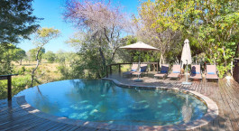 Pool at Elephant Plains Game Lodge, Kruger in South Africa