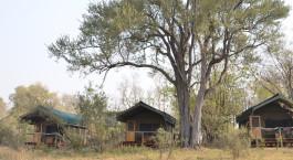 Außenansicht im Sango Safari Camp Hotel in Okavango Delta, Botswana