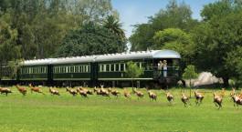 Außenansicht des Rovos Rail: Pretoria – Kapstadt, Südafrika