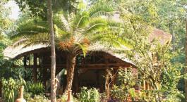 Außenansicht im Kibale Forest Camp Hotel in Kibale, Uganda