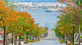 Enchanting Travels Japan Tours Hachiman-zaka slope in Hakodate Hokkaido Japan