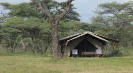 Außenansicht eines Gästezeltes im Ndutu Wilderness Tented Camp, südliches Serengeti in Tansania