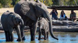 highlights of Zimbabwe - Top Ten Things to do in Zimbabwe