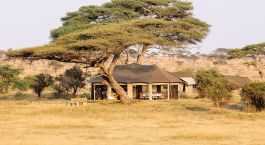 Hotel-Tanzania-Serengeti-Central-NamiriPlains-1