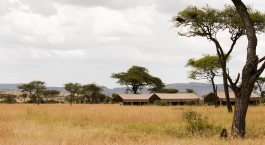 Echanting Travels - Tanzania Tours - Serengeti (Central) Hotel - Kubu Kubu Tented Camp - Serengeti Kati Kati Tented Camp - Set Up Camp (1)