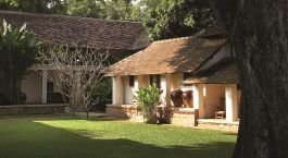 Enchanting Travels Thailand Tours Chiang Mai Hotels Tamarind Village The Magnificent 200 year-old Tamarind Tree