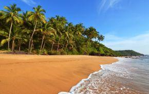 Sandstrand mit Palmen auf Goa, Indien