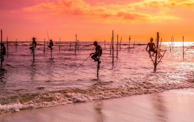 Stelzenfischer in Sri Lanka