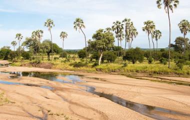 Ruaha Nationalpark - Landschaft während der Trockenzeit