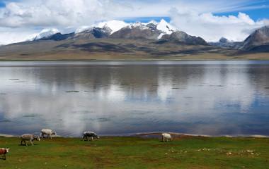 Enchanting Travels Tibet Tours Gyangtse Yamdrok
