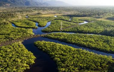 Luftaufnahme eines von Flüssen durchschnittenen Regenwaldes im Amazonas, Brasilien