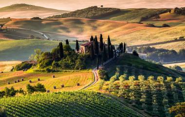 Italien Reisen durch die Toskana, Weinberge und Hügel