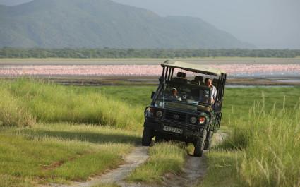Geländewagen vor Schwarm von Flamingos am Manyara-See in Tansania, Afrika