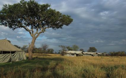 Außenansicht einiger Gästezelte des Serengeti North Wilderness Camps im nördlichen Serengeti, Tansania