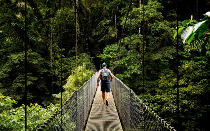 Take a Canopy Walk in Monteverde Cloud Forest on your Costa Rica Vacation