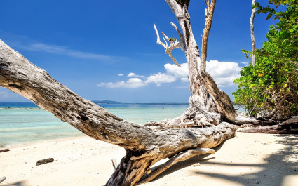 Havelock Island at the Andamans in India