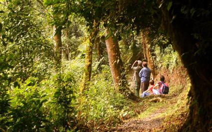 Vogelbeobachtungstour in Ruanda