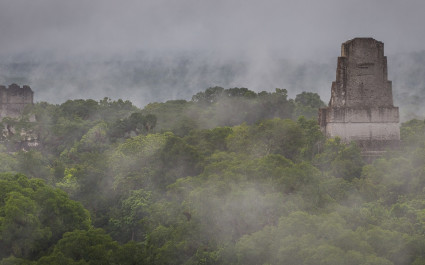 The magnificent ruins of Tikal peeking through the mist