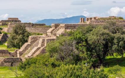 Zwischen Bäumen befindliche Bauwerke von Monte Alban in Mexiko