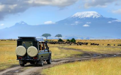Geländewagen auf Pirschfahrt in der Masai Mara in Kenia, Afrika