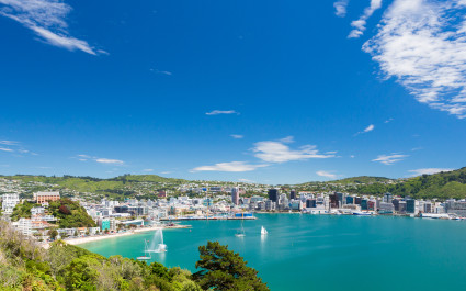 View from Mount Victoria into the bay of Wellington capital city of New Zealand