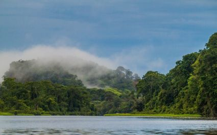 Misty morning at Tortuguero