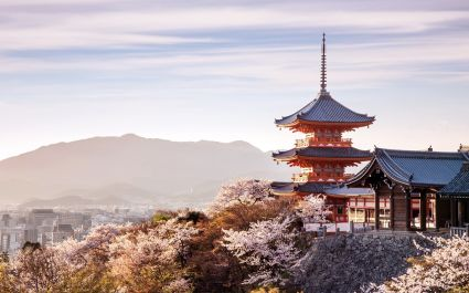 Sunset at Kiyomizu Temple in cherry blossom season