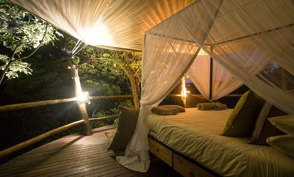 rubondo-island-camp-tree-house-night-eric-frank-hr-1