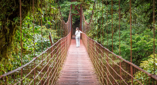 Enchanting Travels Costa Rica Tours hanging suspended bridges