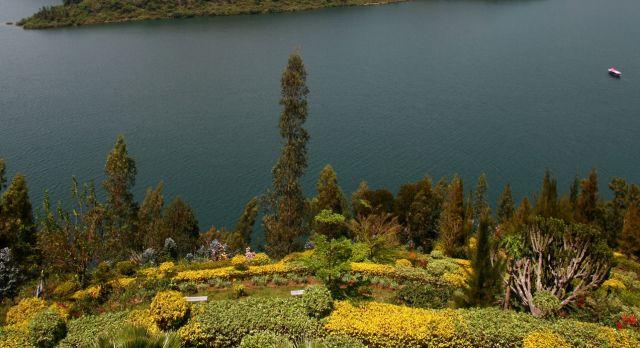 Der Lake Kivi