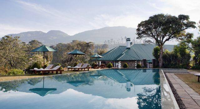 Tea Trails in Sri Lanka