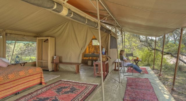 Kenya or Tanzania: Which wilderness safari is the one for you?