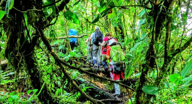 Hiking in Arenal National Park on a Costa Rica Vacation